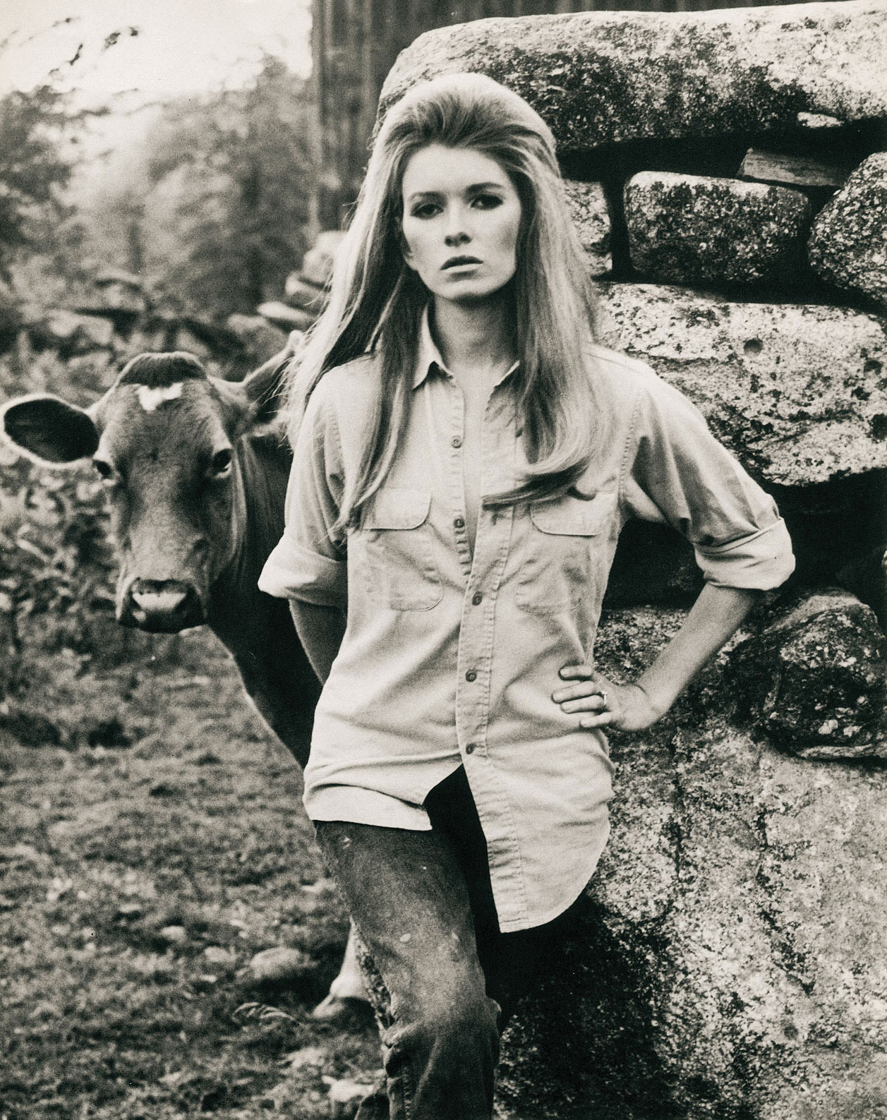 Martha Stewart Vintage Modeling Photo, Barnyard Animal