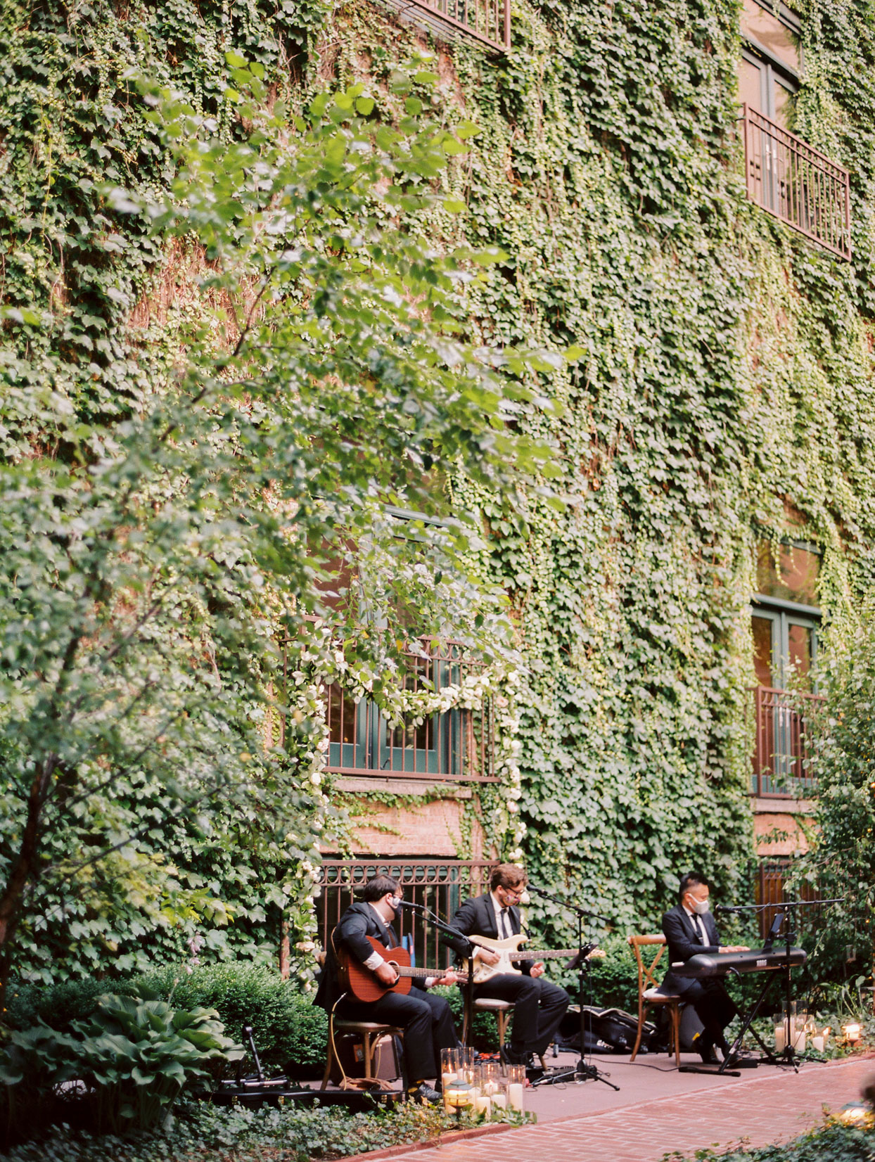 musicians playing in front of ivy wall