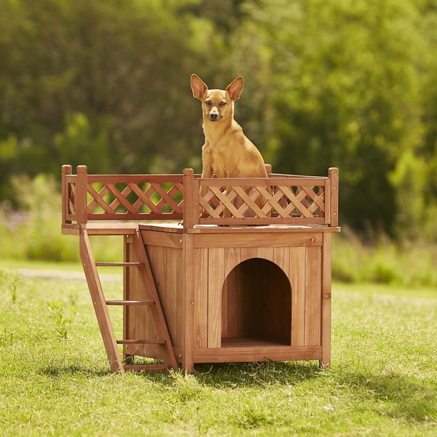 dog house with a balcony