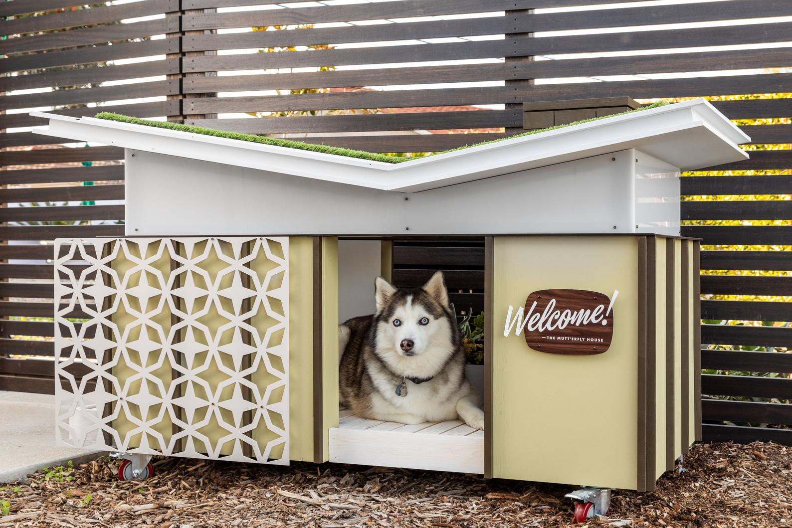 mid-century modern dog house