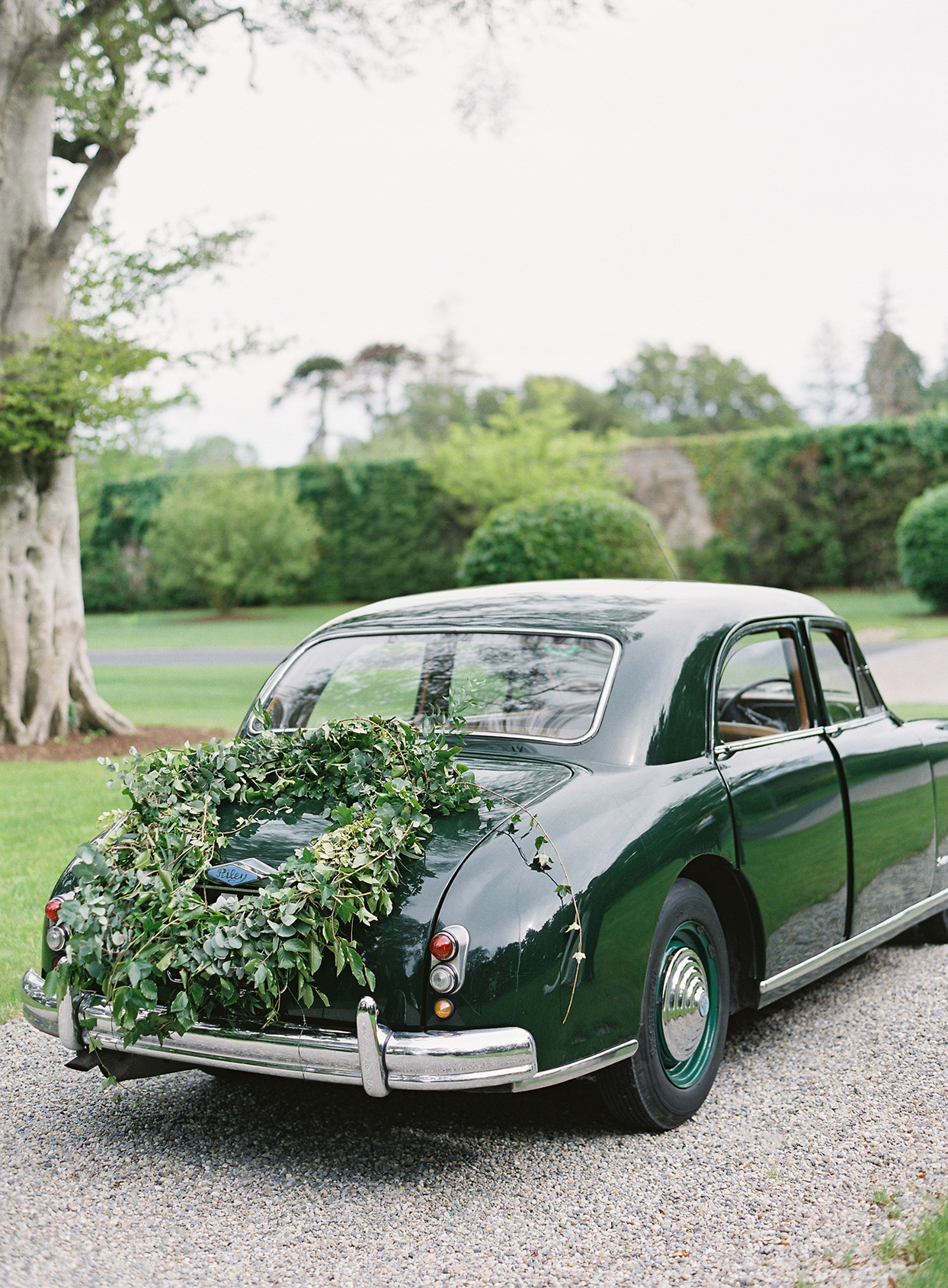 green vintage care with large greenery display on trunk