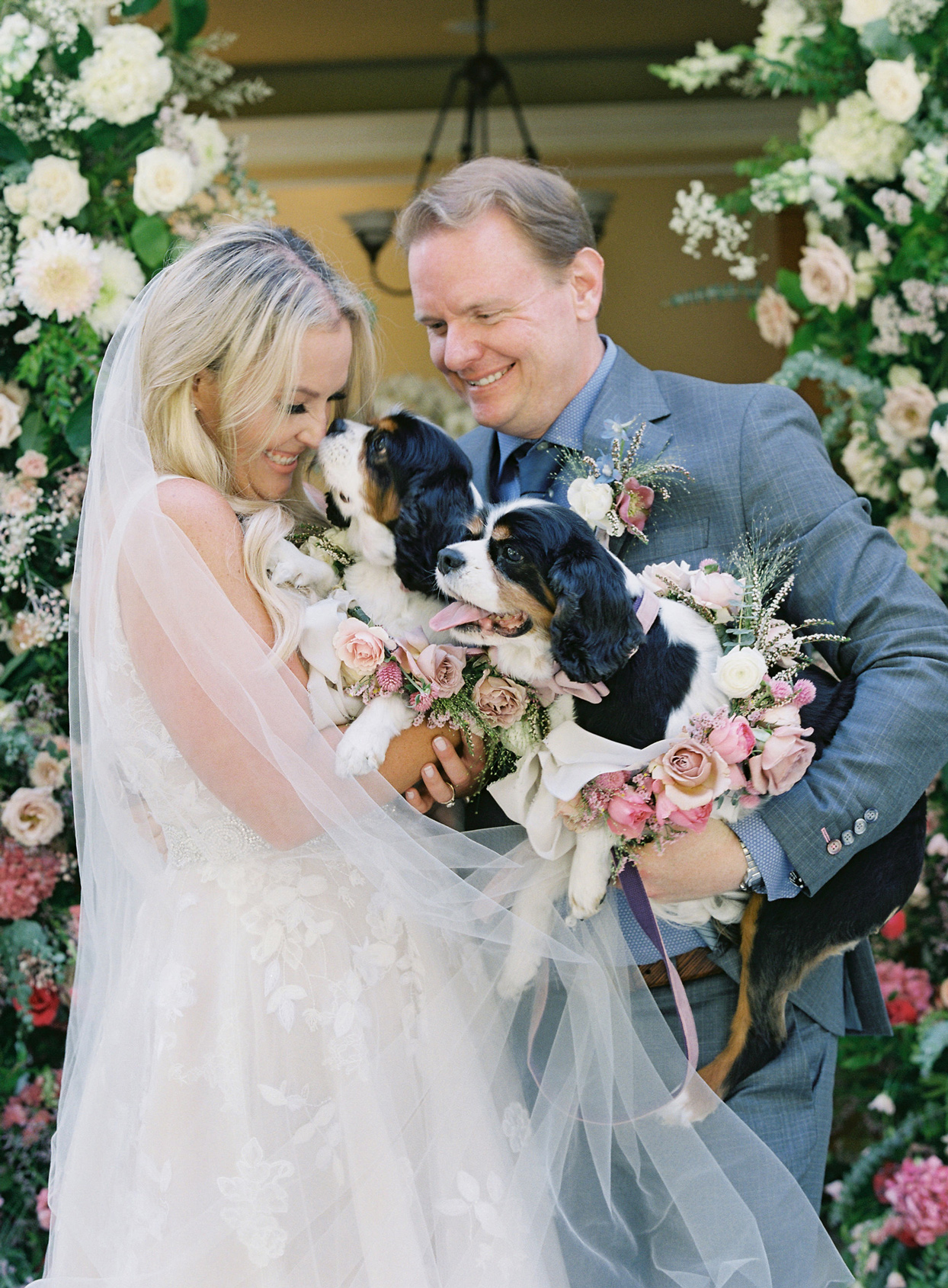 bride and groom holding two Cavalier King Charles Spaniels