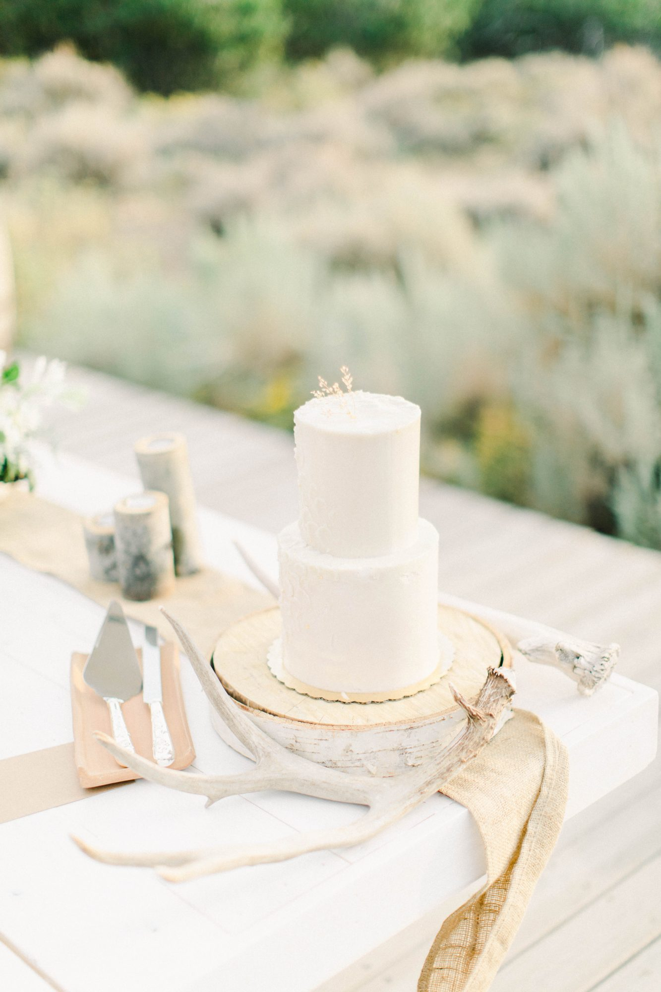 Two-tier wedding cake with serveware