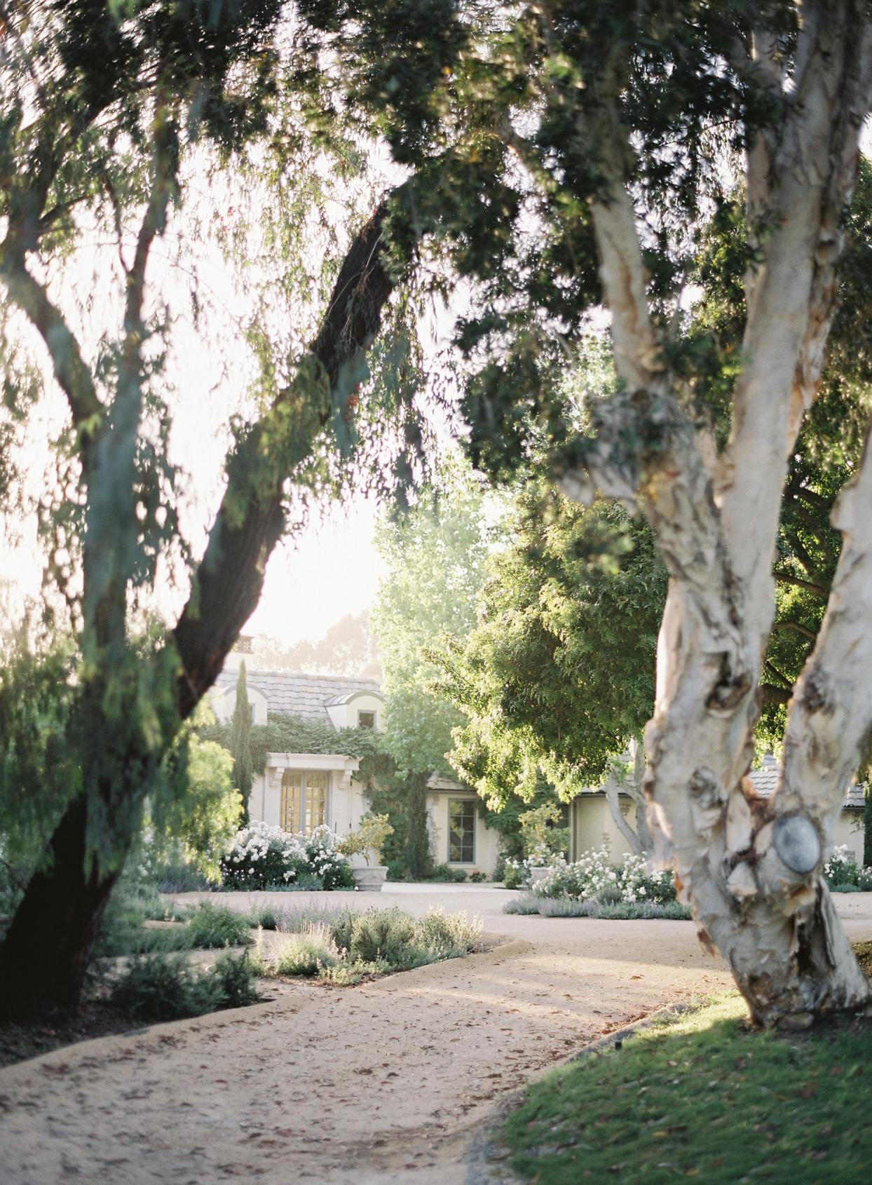 Wedding venue tucked in trees and greenery