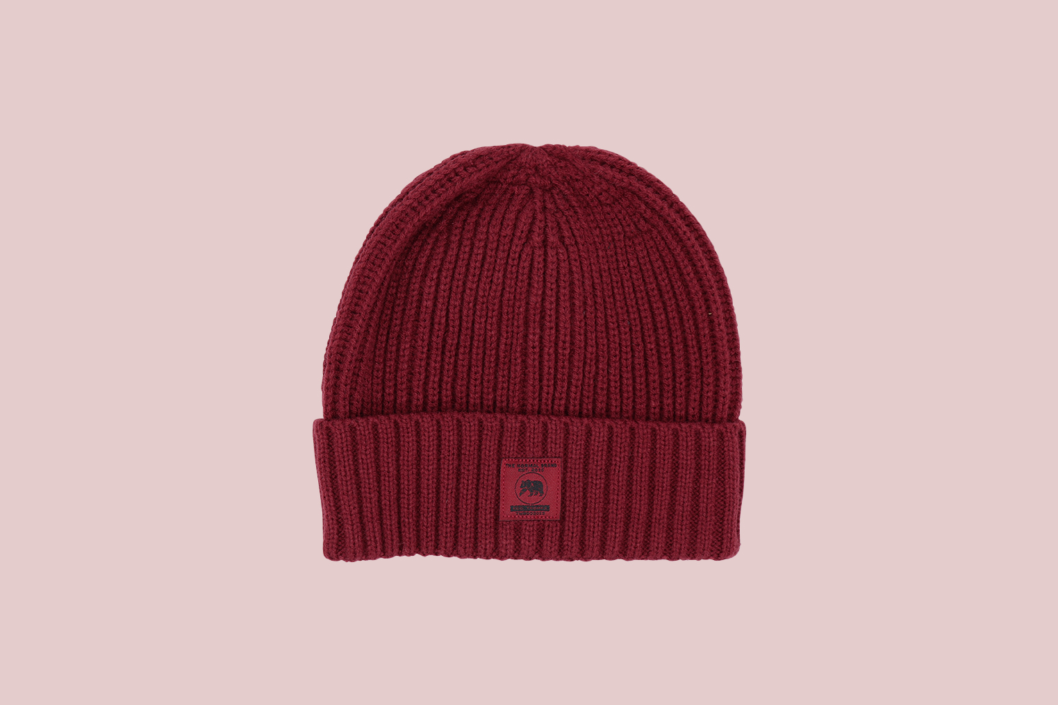 The Normal Brand Canvas Fisherman Beanie