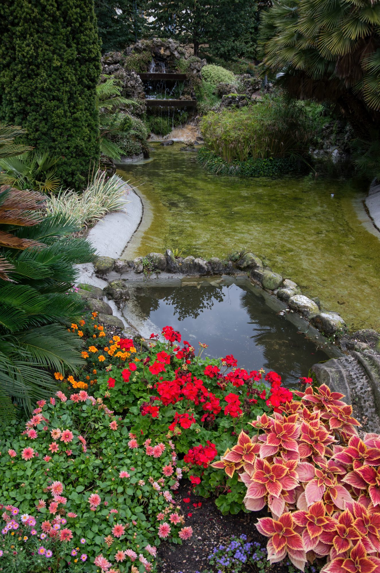 Spanish garden with stone and rock accents, with flowers in foreground