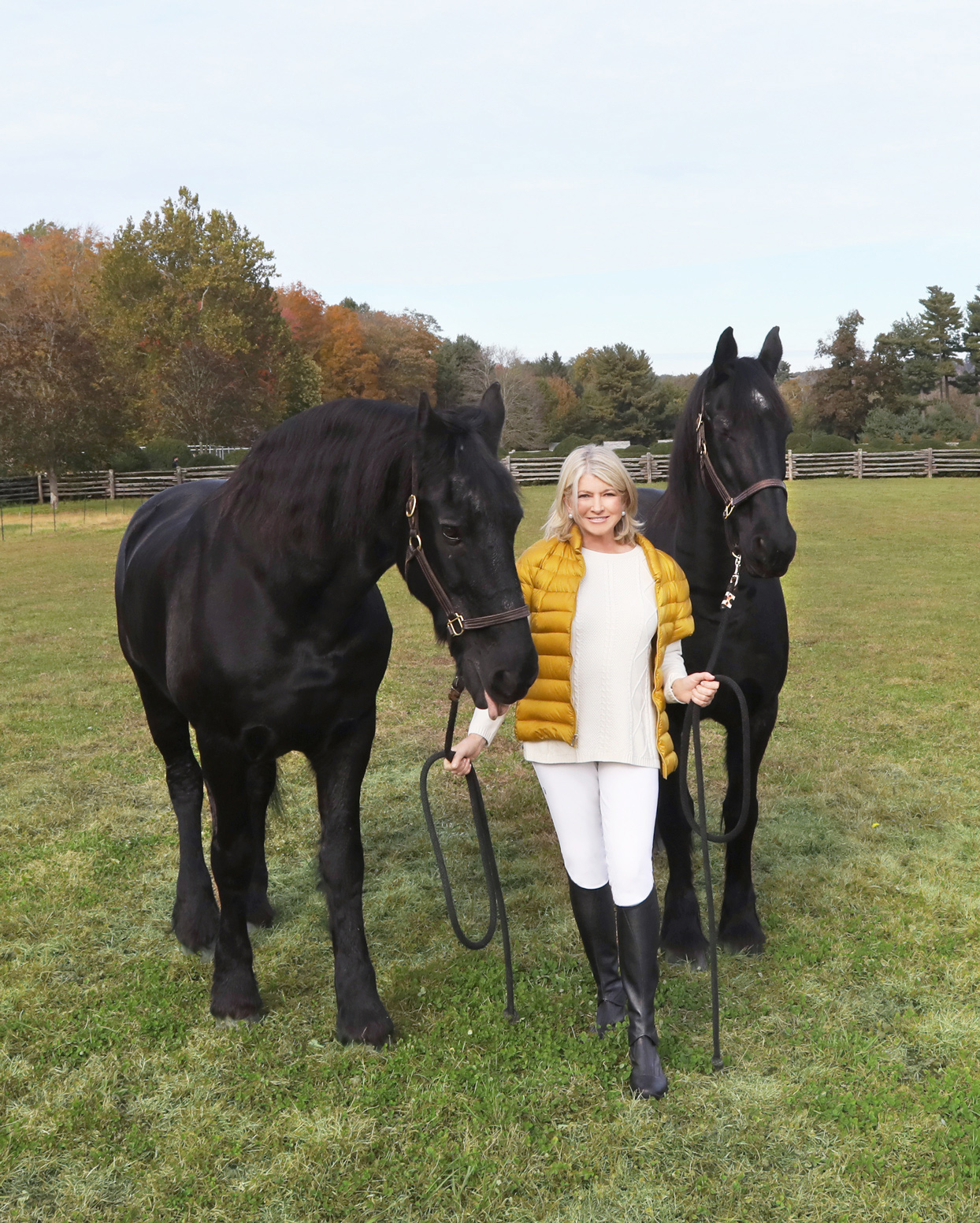 Martha Stewart with black clydesdale horses.