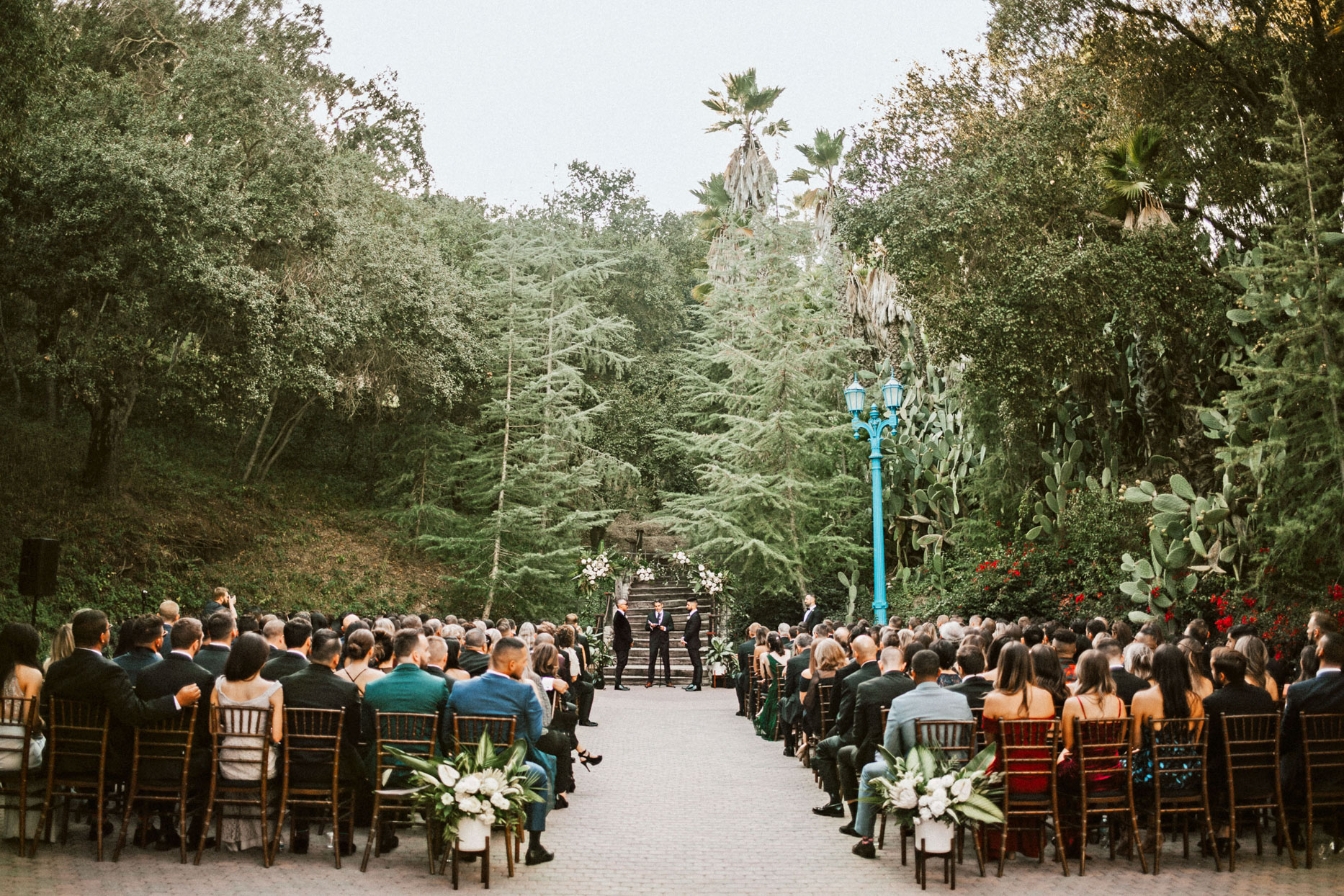 woodland wedding ceremony with guests in brown chairs