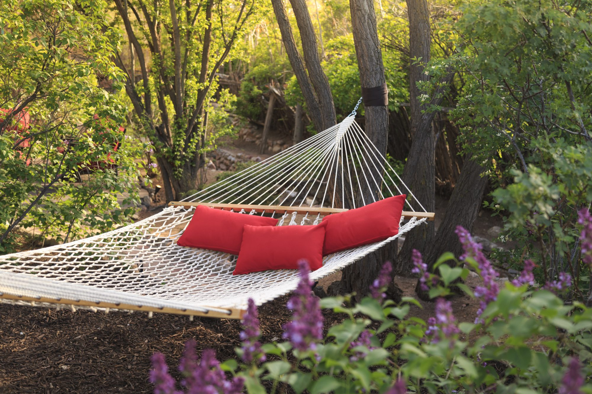 Red Hammock in the Garden