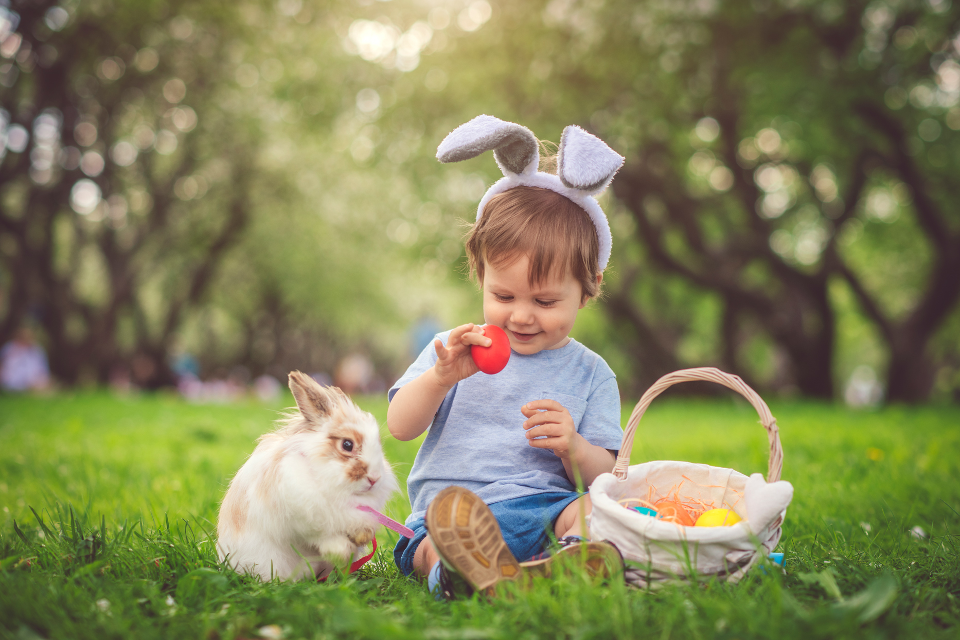 small child sitting on the grass wearing bunny ears with bunny and egg filled easter basket