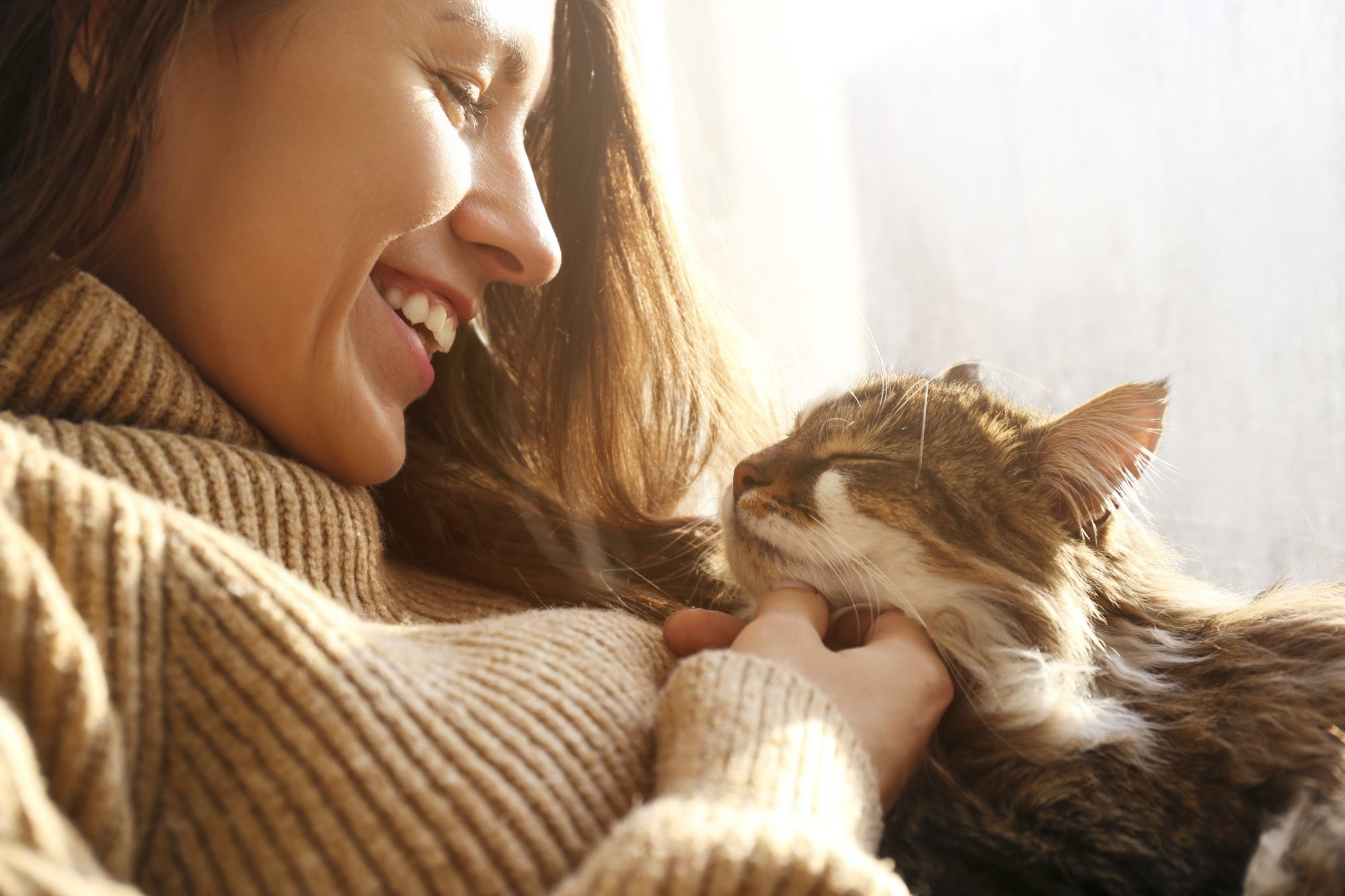 woman scratching her fluffy cat's chin