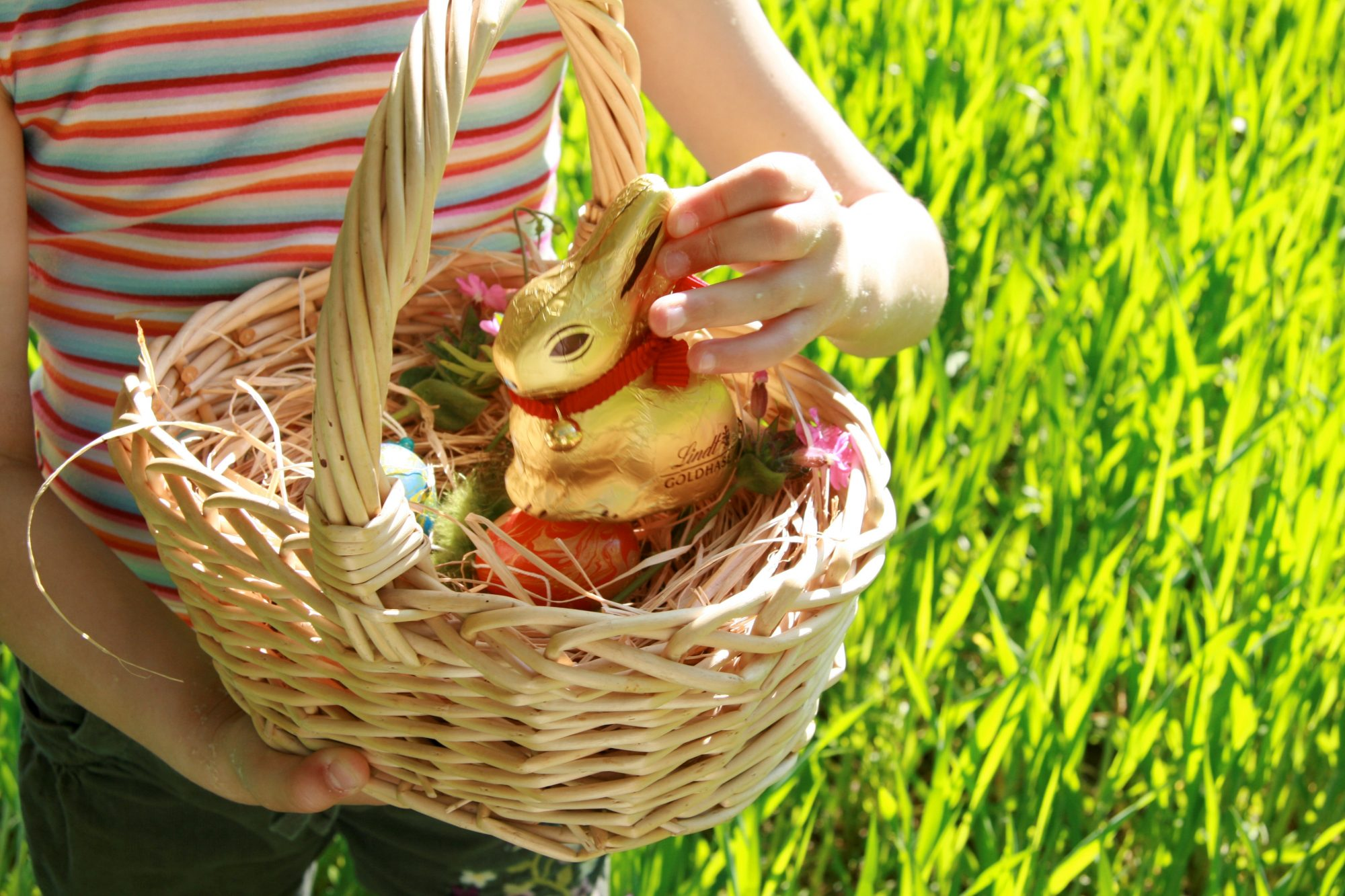 child holding easter basket with chocolate bunny