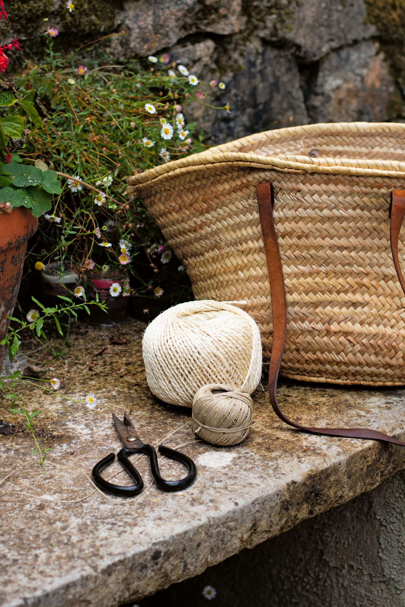 foraging tolls and basket