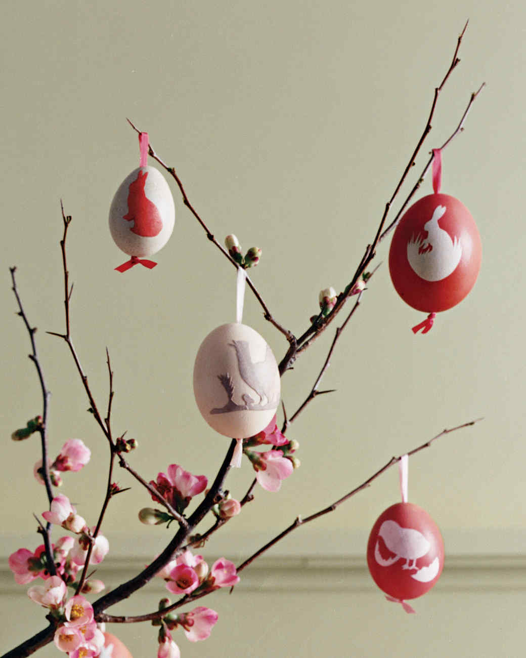 Easter eggs hanging from branch