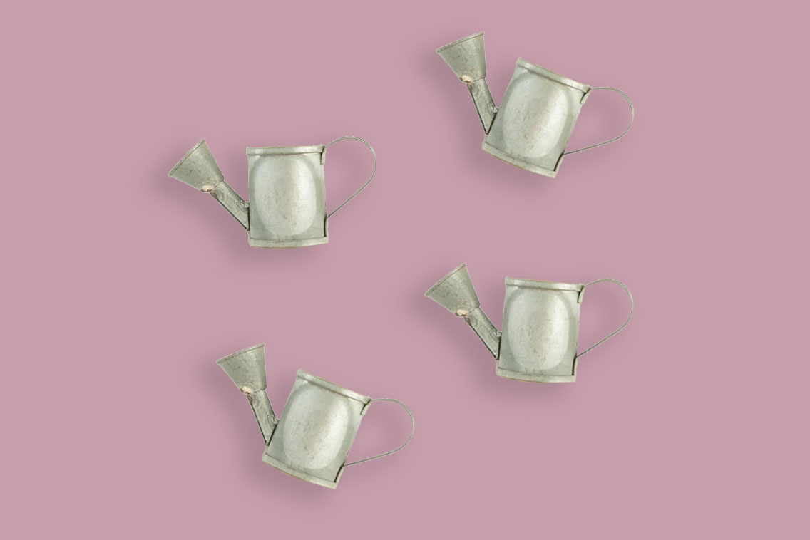 Watering Can Napkin Rings set of 4