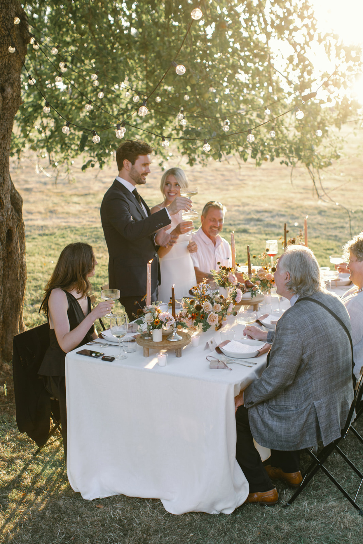 bride and groom toasting guests