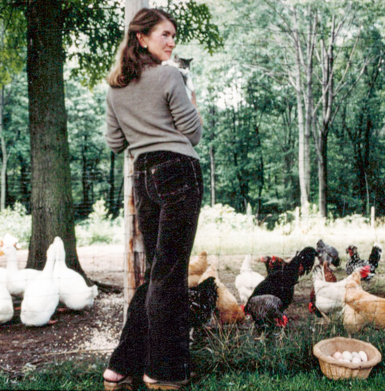 martha stewart in front of turkey hill chicken coop