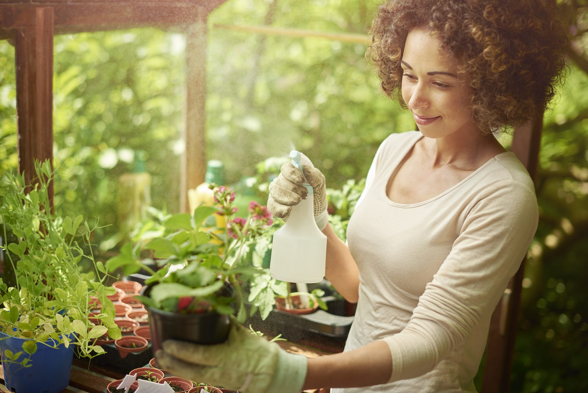woman watering plants before planting
