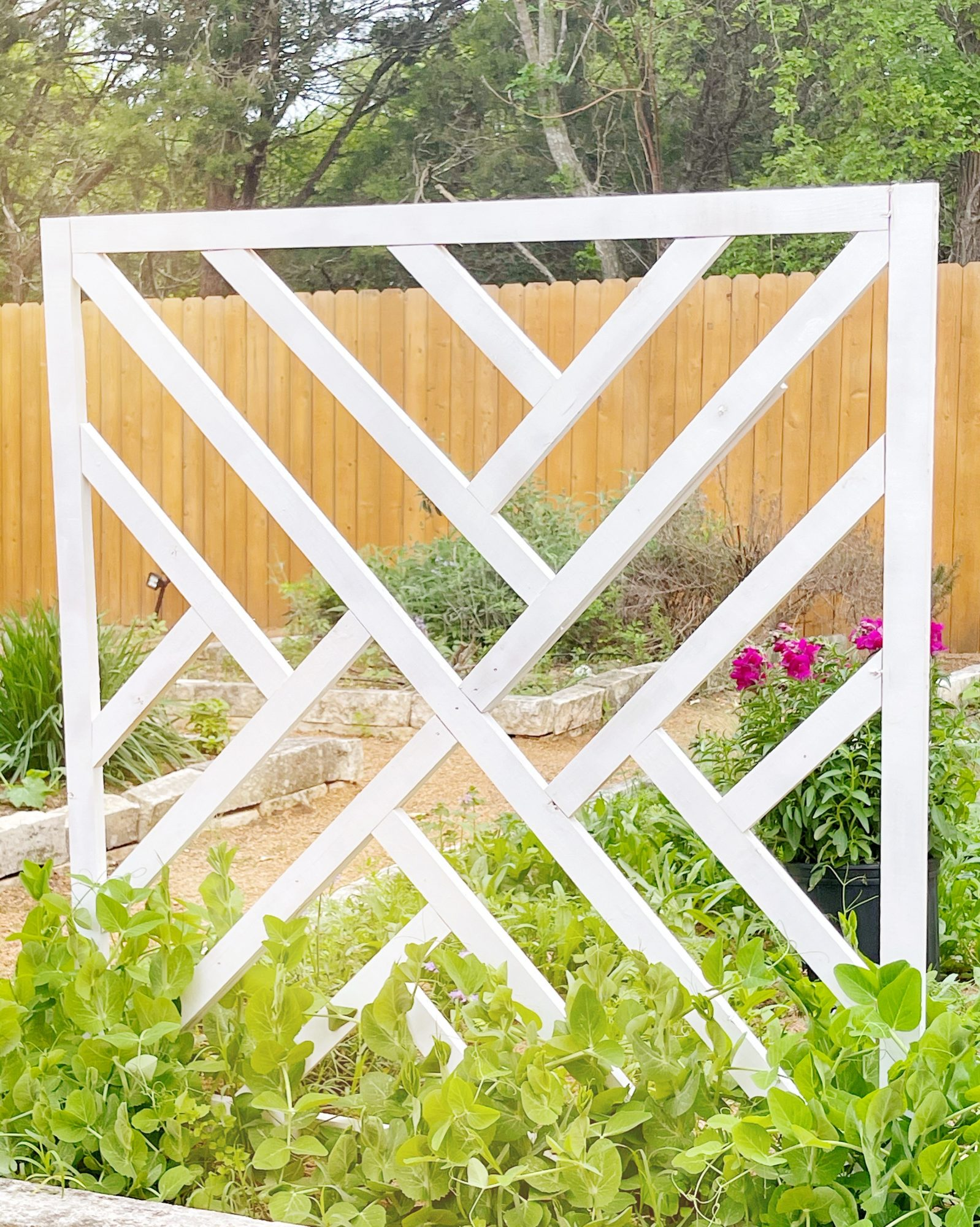 finished diy chippendale garden trellis