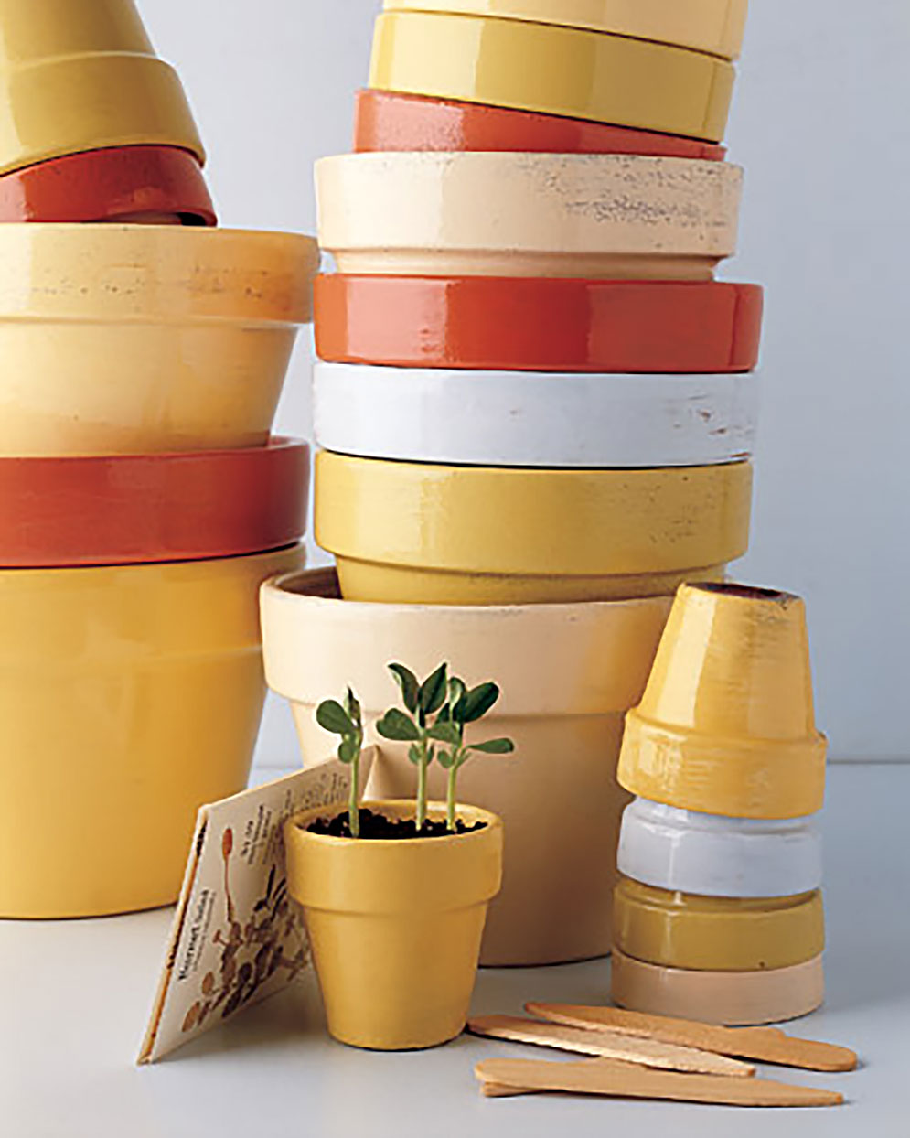 personalized terra cotta pots