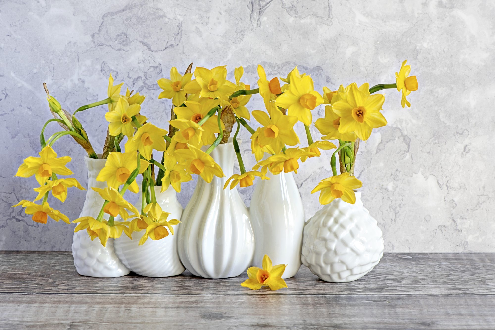 yellow daffodils bouquets in white vases