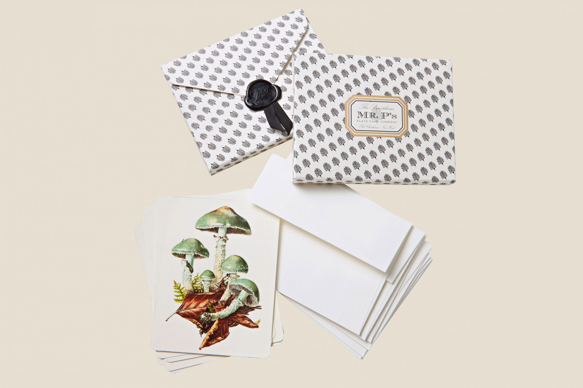 the punctilous notecards