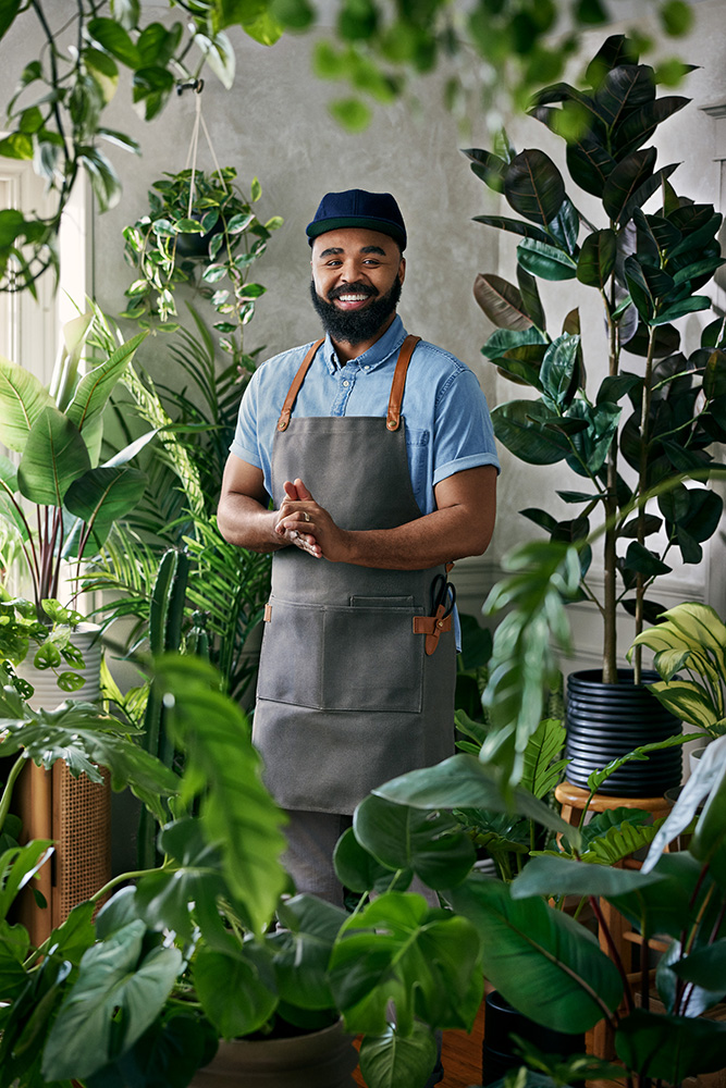 hilton carter x target houseplant collection