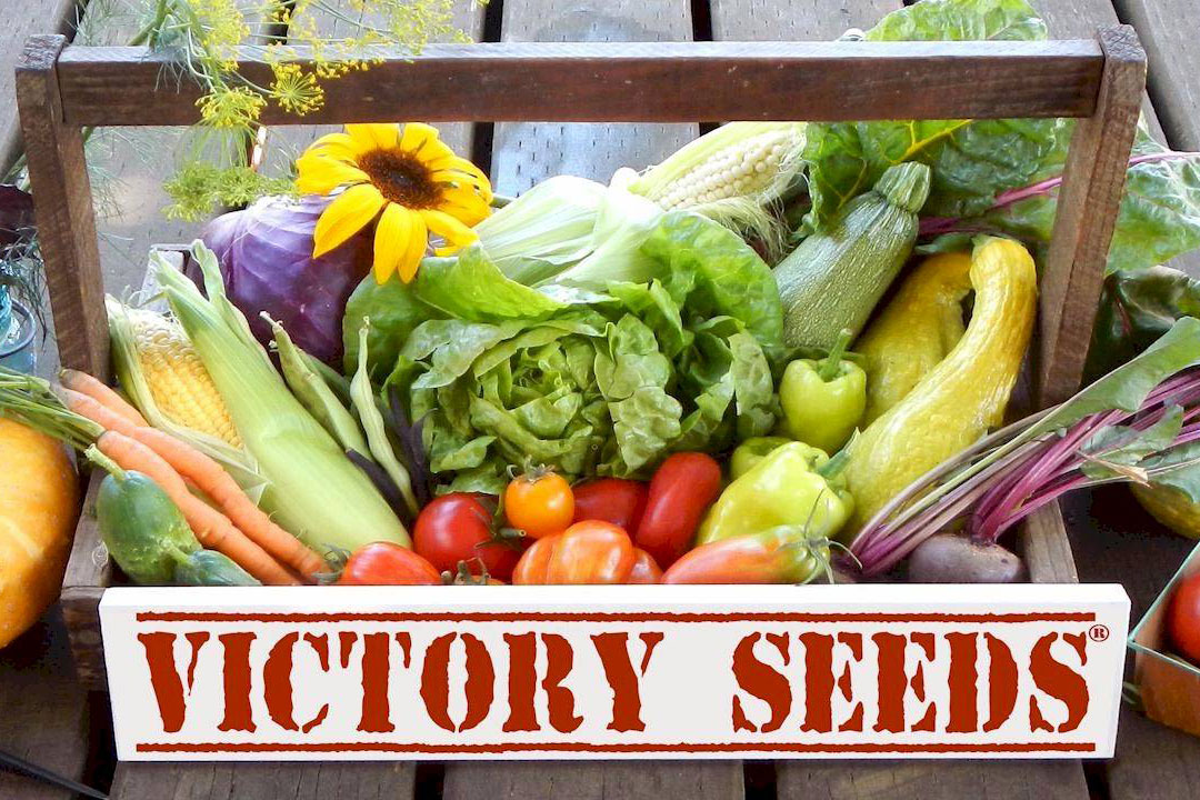victory seeds vegetable assortment