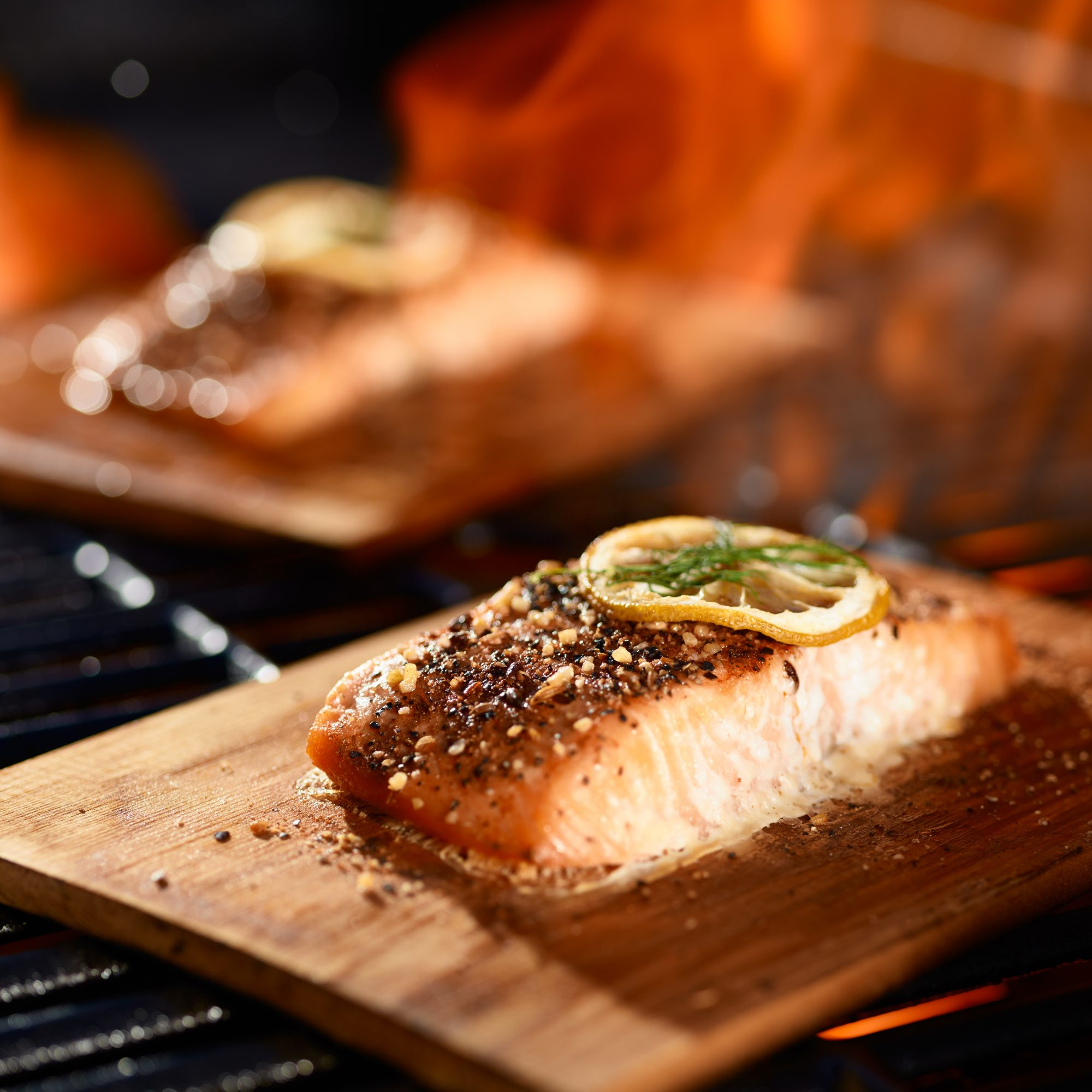 salmon fillets cooking on cedar planks on grill