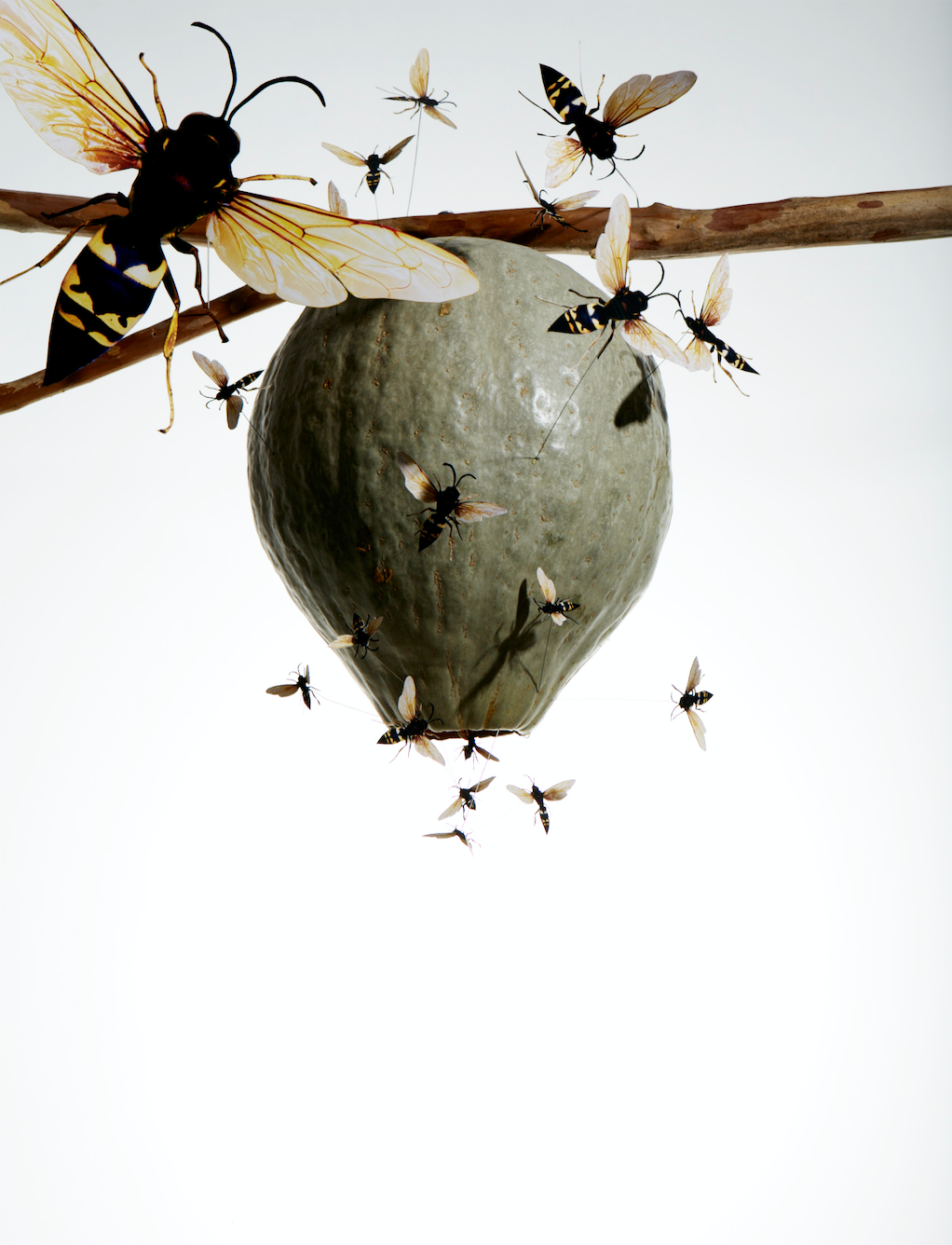 decorated gourd as hornets nest