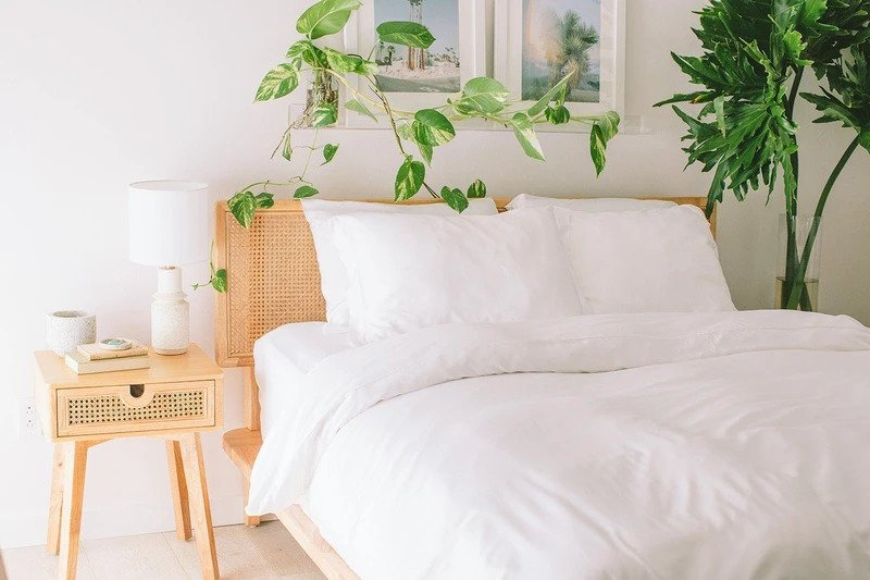 Nest Bedding 100% Bamboo Luxury Bed Sets