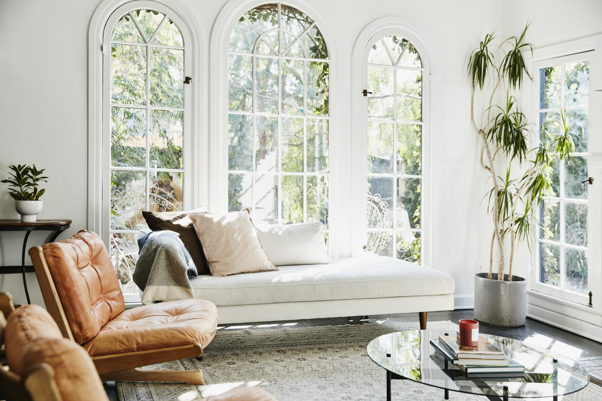 View of living room with houseplants