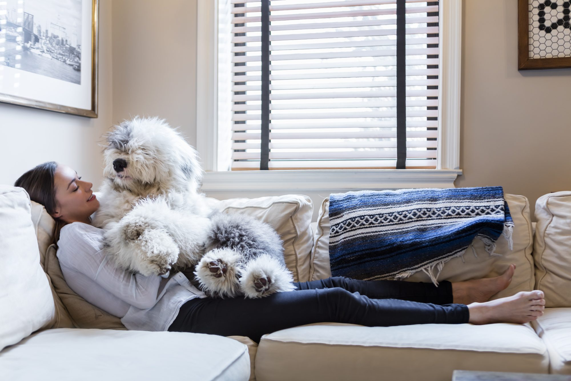 woman on couch with old english sheep dog