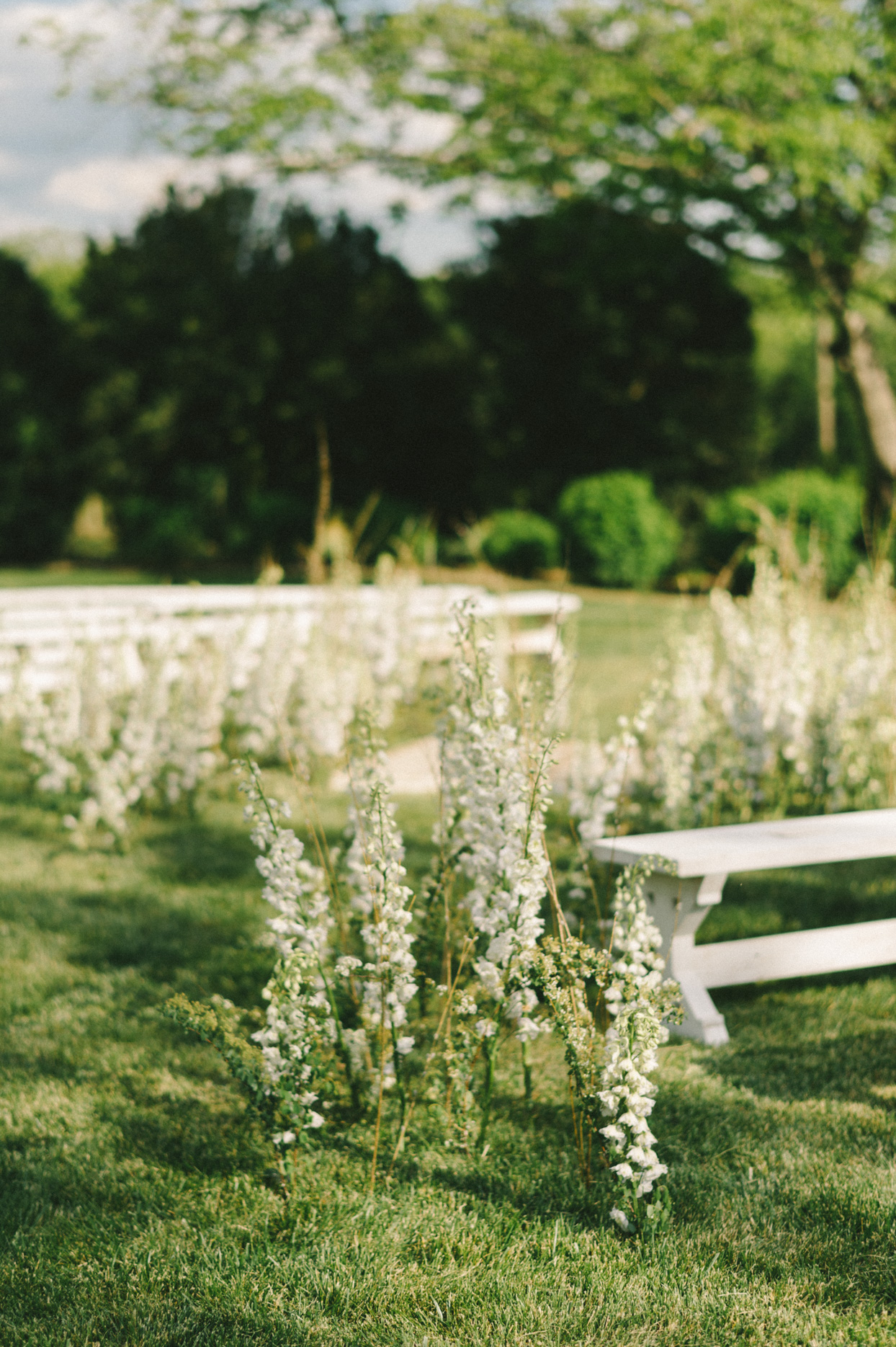 white flowers around benches for outdoor wedding ceremony