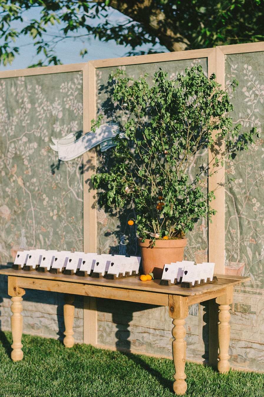 wooden table with escort cards and citrus plant