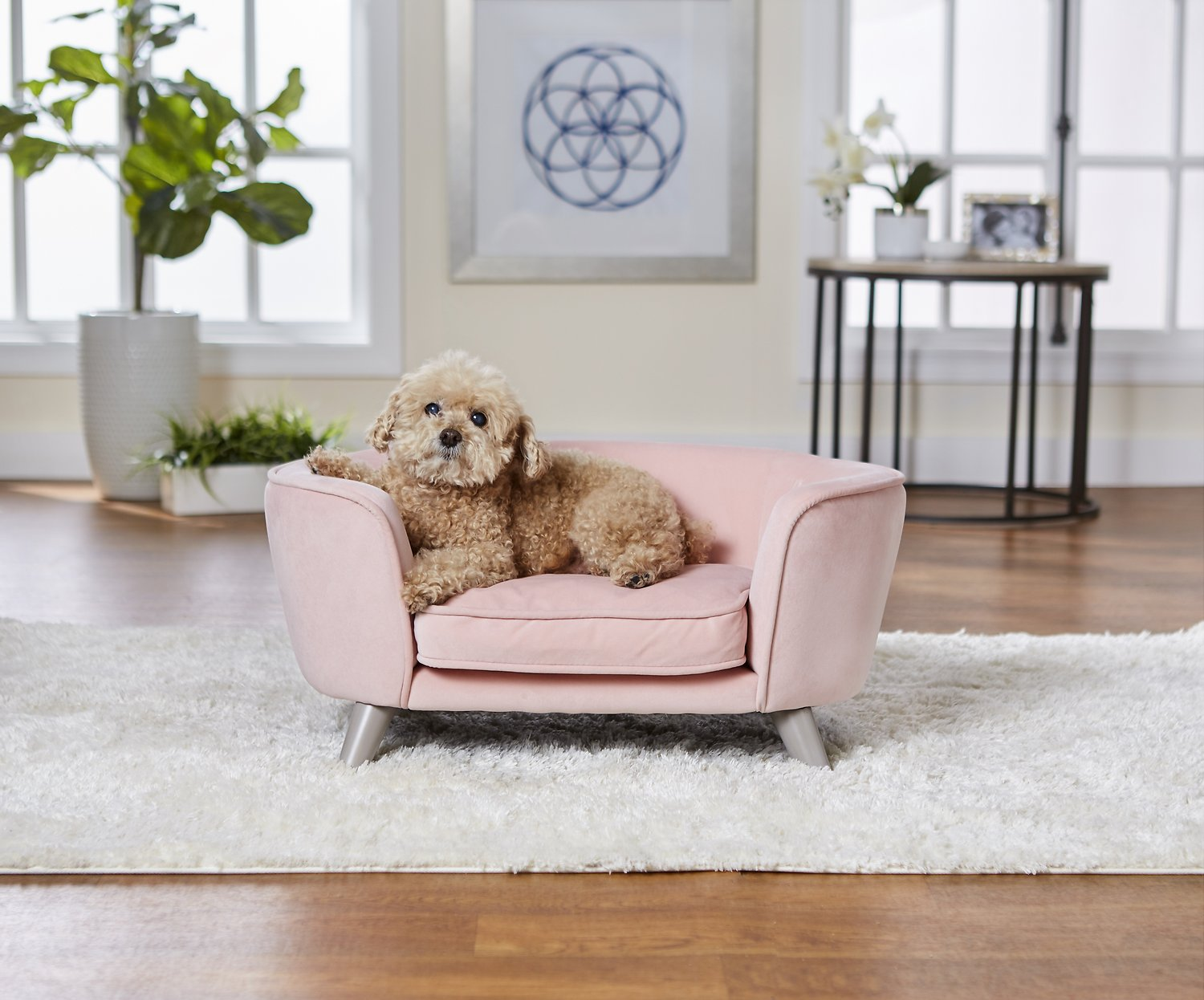 Enchanted Home Pet Romy Sofa Cat & Dog Bed with Removable Cover