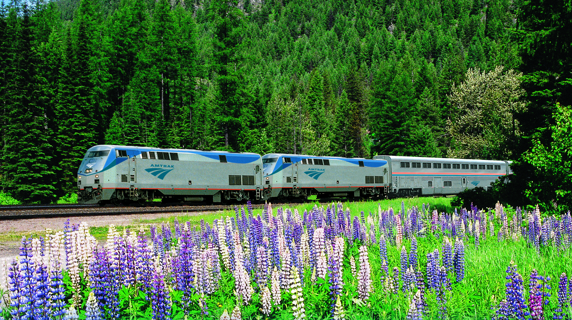 spring view of amtrak pacific northwest route