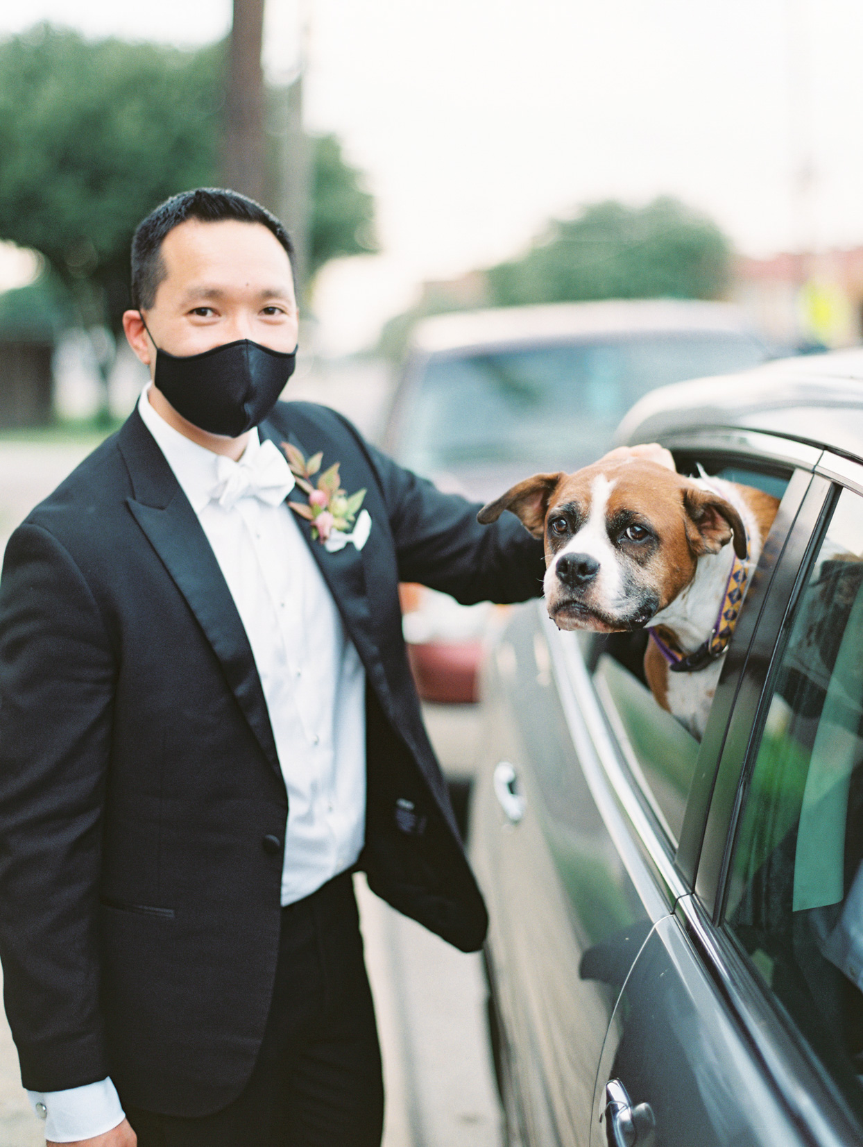 groom in mask with dog in car