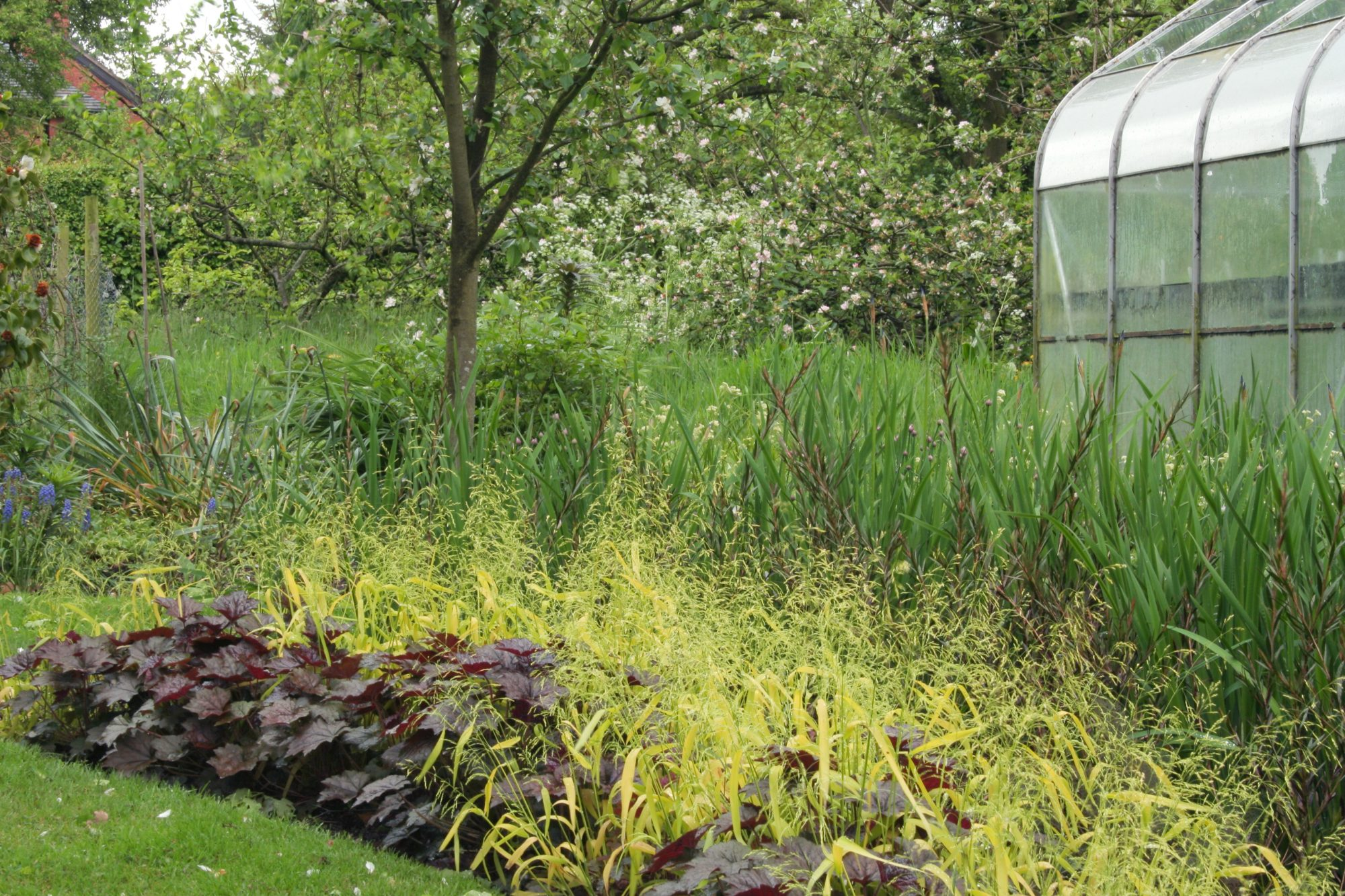 """Every region has native plants that are """"resistant, and even resilient, to animal browse,"""" says Griffin; check plant and garden stores, cooperative extension services, and native plant databases for ideas specific to your area. Then, carefully consider how and where to place your plants. """"The keys to increasing your success are found in plant selection and placement—planting strategically and with abundance,"""" says Griffin. """"Fundamentally, anything out in the open, by itself, will always be vulnerable, so arranging a variety of plantings in higher densities will improve any impact from browsing wildlife. Plants allowed to grow and weave together naturally have more success in resisting browse pressure of deer, rabbits, and other animals."""""""