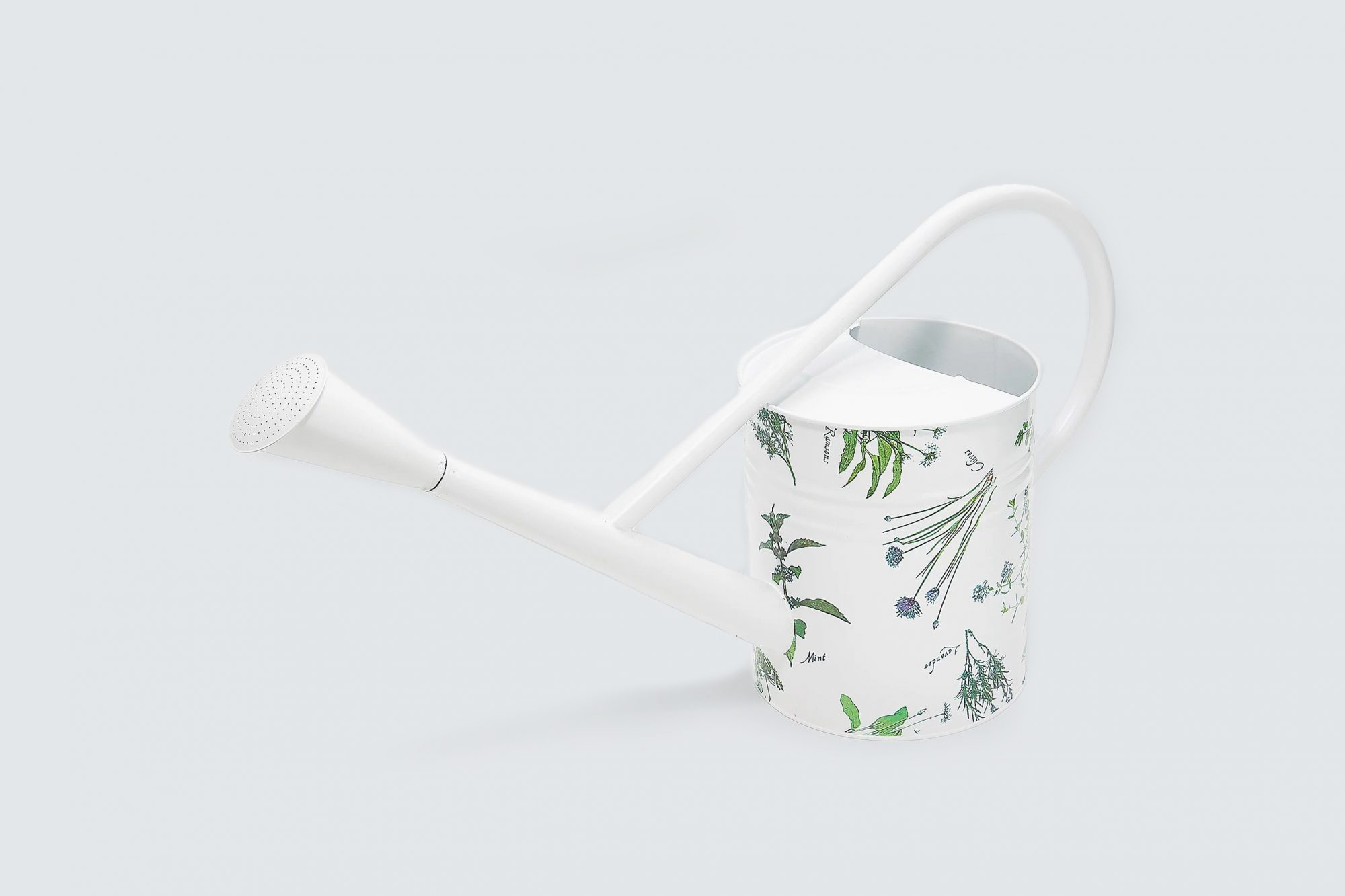 Barbara King Oversized French Floral Metal Watering Can