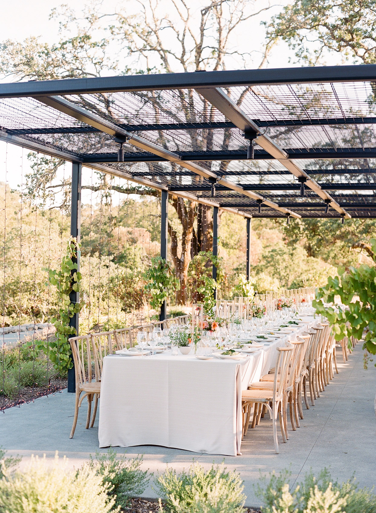 long outdoor wedding table with handing lights
