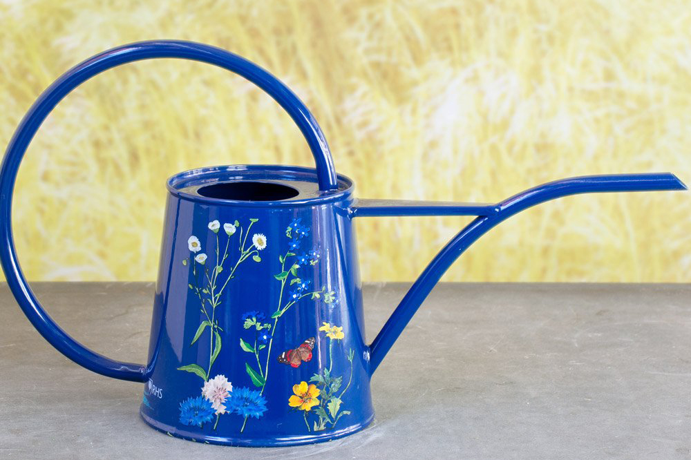 White Flower Farm Butterfly Meadow Indoor Watering Can