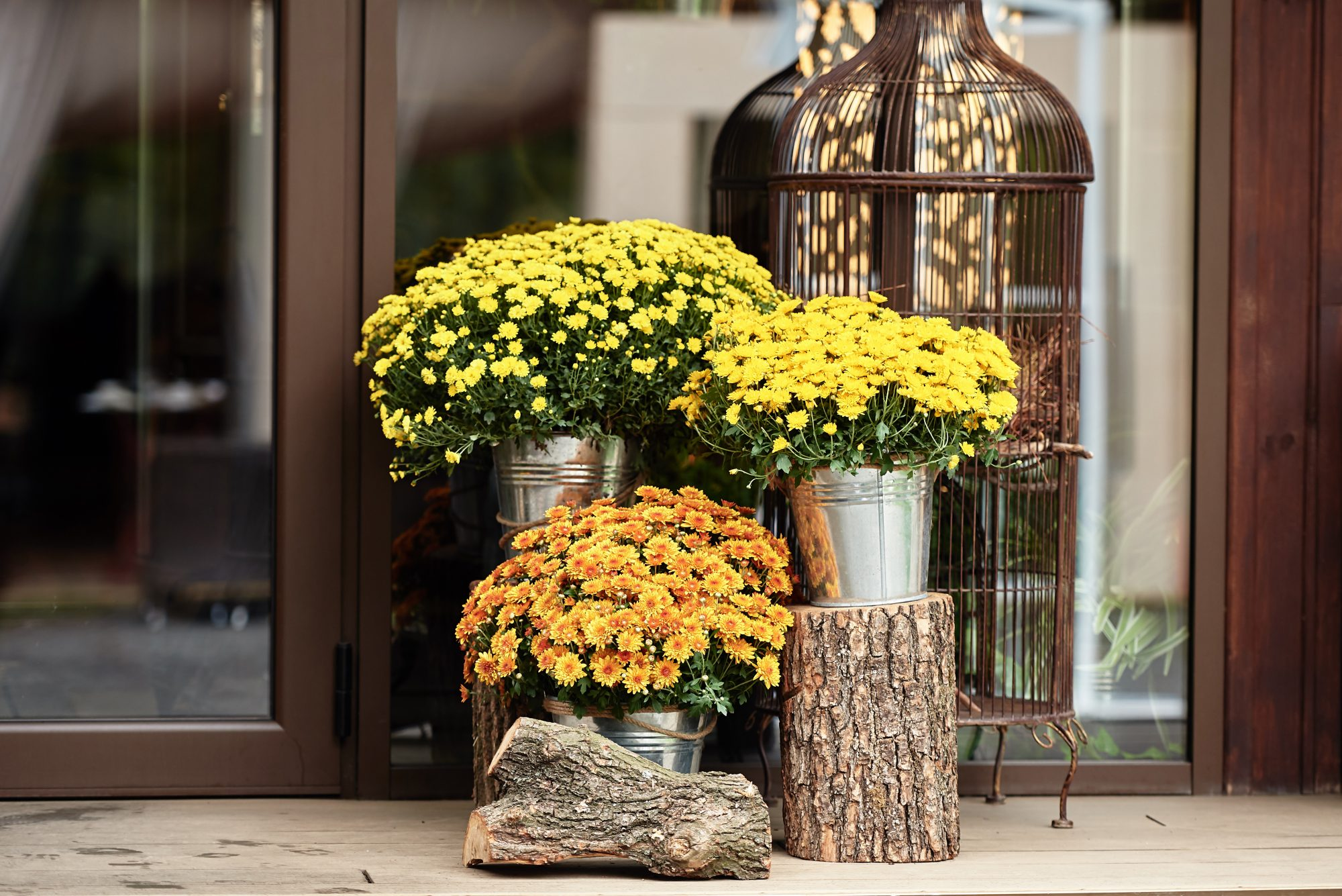 How to Put Together a Show-Stopping Fall Planter