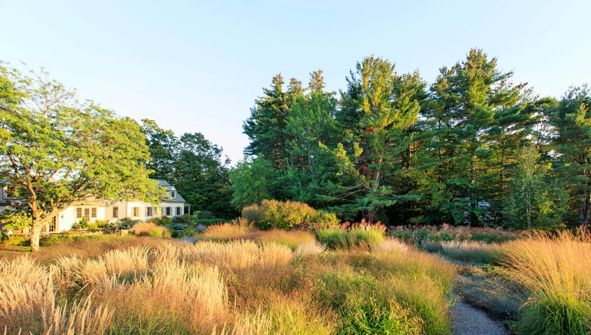 cottage-style home front meadow