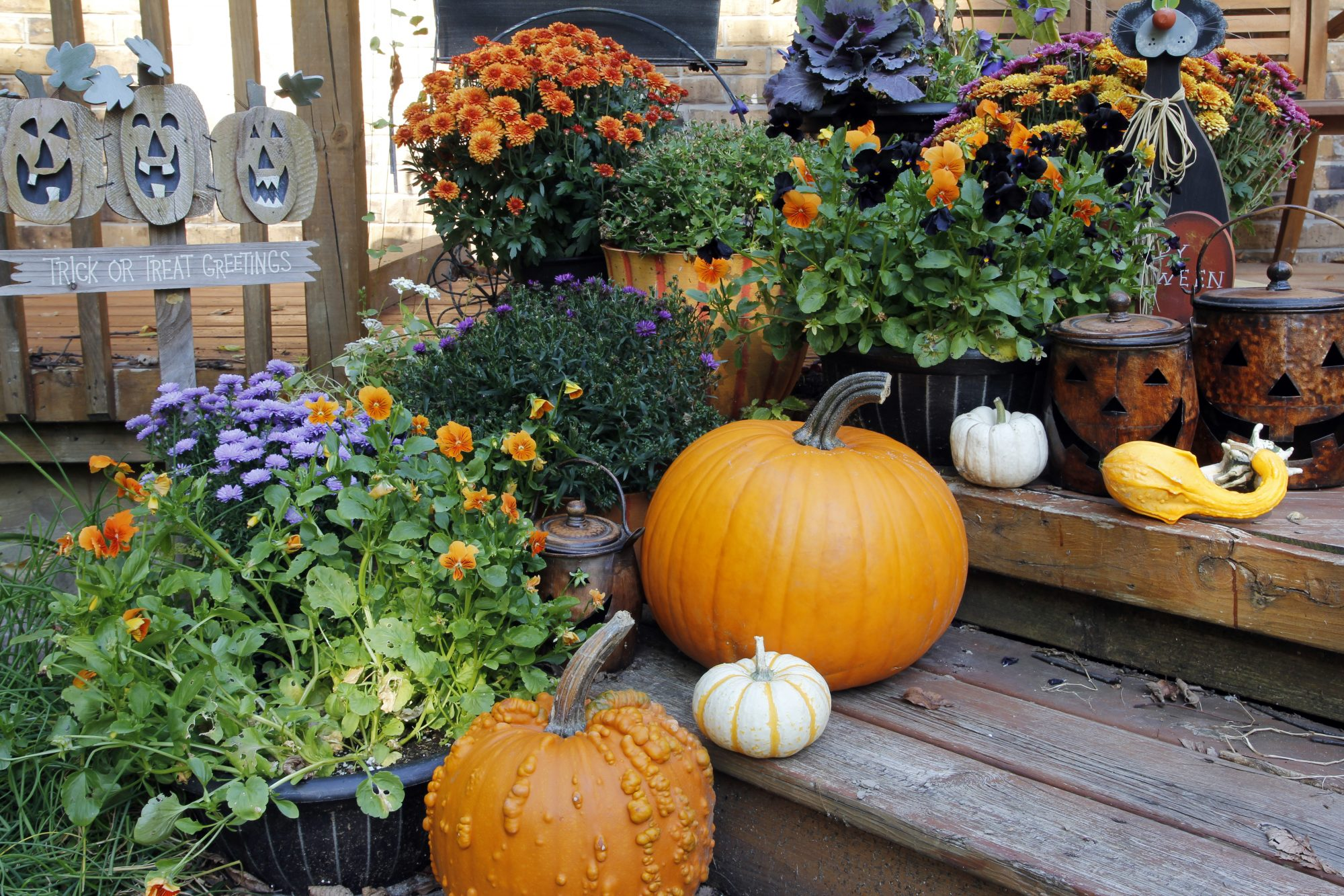 pumpkins and flowers front porch fall decor