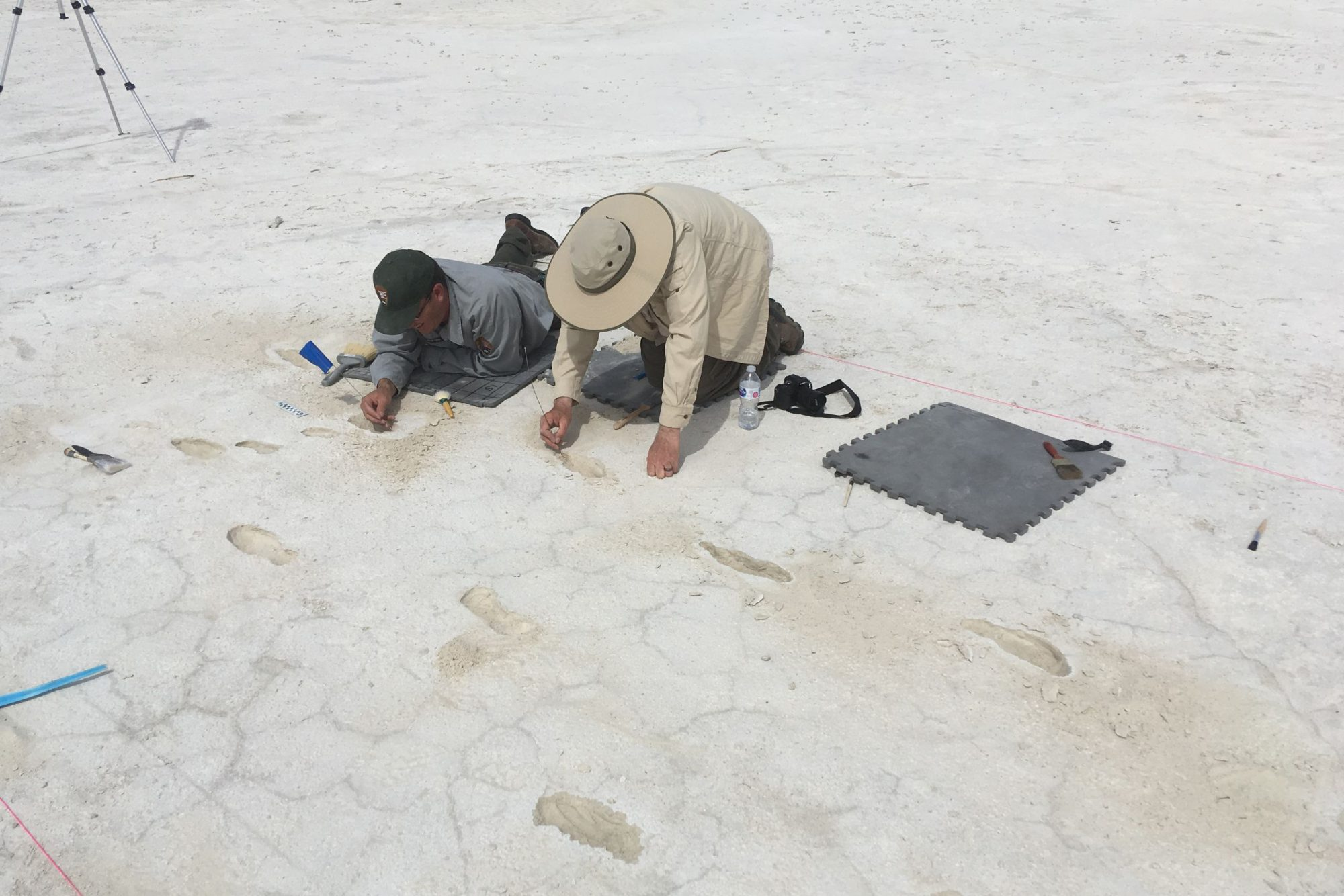 archaeologist uncovering human footprint at white sands national monument
