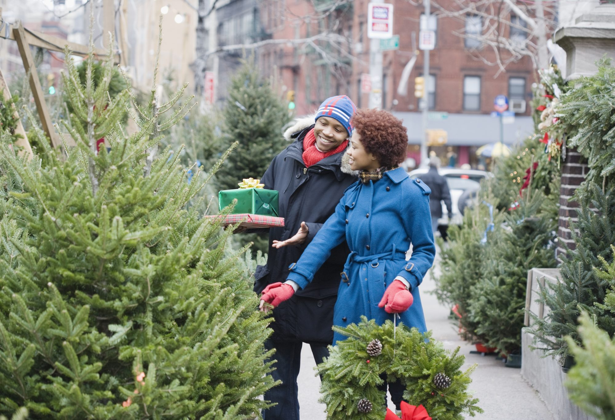 couple looking at Christmas trees