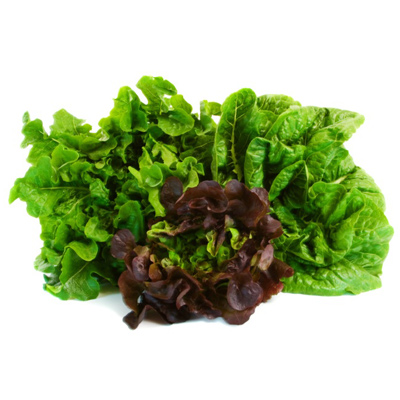 Hydrating Foods: Romaine Lettuce