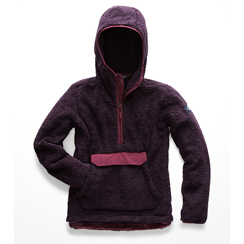 Clothes: The North Face Campshire Pullover Hoodie