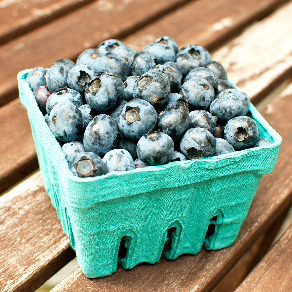 blueberries healthy food for skin and hair